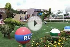 FIFA World Cup Viewing at Odyssey at Epcot; Soccer Goofy