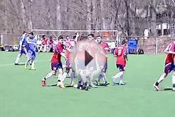 Ironbound Soccer Club - Deville New Jersey - soccer game